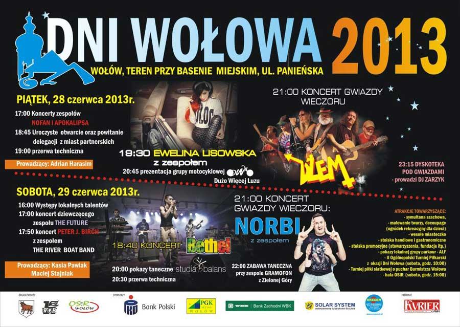 Dni Wołowa - 28 i 29 czerwca 2013
